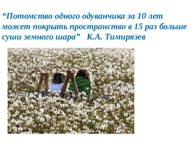 """"""" Потомство одного одуванчика за 10 лет может покрыть пространство в 15 раз больше суши земного шара"""" К.А. Тимирязев"""