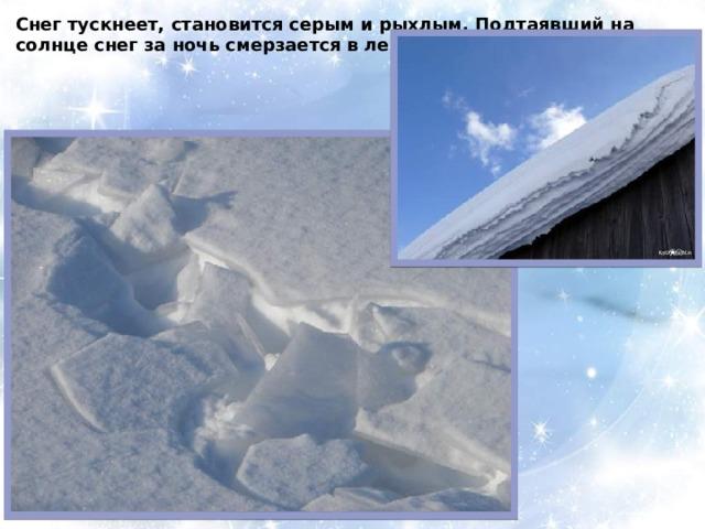 Снег тускнеет, становится серым и рыхлым. Подтаявший на солнце снег за ночь смерзается в ледяную корку – наст.