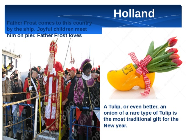 Holland Father Frost comes to this country by the ship. Joyful children meet him on pier. Father Frost loves cheerful draws and surprises and often gives to children marzipan fruit, toys, candy flowers. A Tulip, or even better, an onion of a rare type of Tulip is the most traditional gift for the New year.