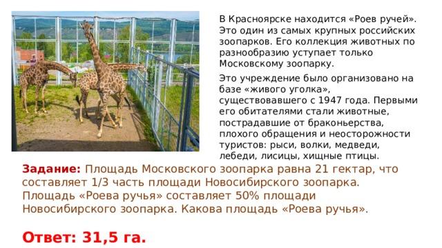 В Красноярске находится «Роев ручей». Это один из самых крупных российских зоопарков. Его коллекция животных по разнообразию уступает только Московскому зоопарку. Это учреждение было организовано на базе «живого уголка», существовавшего с 1947 года. Первыми его обитателями стали животные, пострадавшие от браконьерства, плохого обращения и неосторожности туристов: рыси, волки, медведи, лебеди, лисицы, хищные птицы. Задание: Площадь Московского зоопарка равна 21 гектар, что составляет 1/3 часть площади Новосибирского зоопарка. Площадь «Роева ручья» составляет 50% площади Новосибирского зоопарка. Какова площадь «Роева ручья». Ответ: 31,5 га.