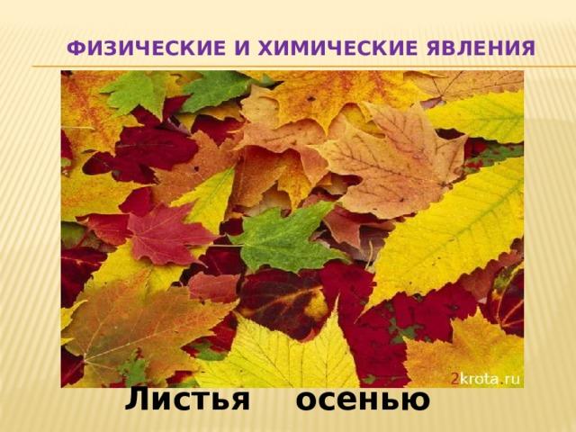 Физические и химические явления Листья осенью