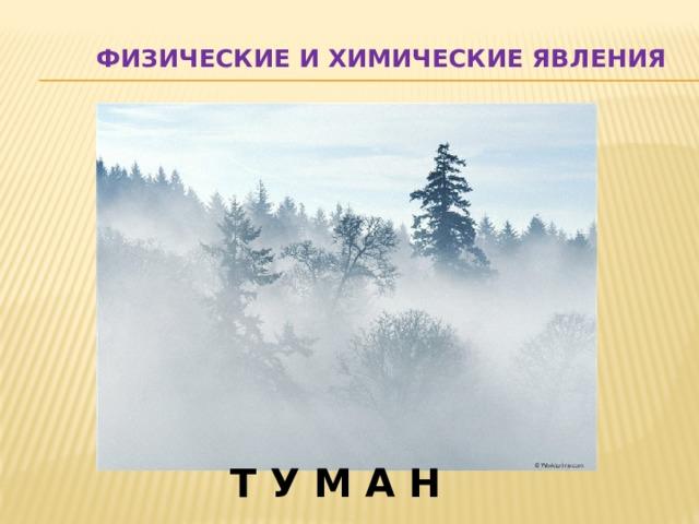 Физические и химические явления Т У М А Н