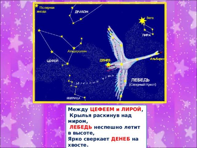 Между ЦЕФЕЕМ и ЛИРОЙ ,  Крылья раскинув над миром,  ЛЕБЕДЬ неспешно летит в высоте, Ярко сверкает ДЕНЕБ на хвосте. Ясною ночью на Млечном Пути  Северный Крест постарайся найти!