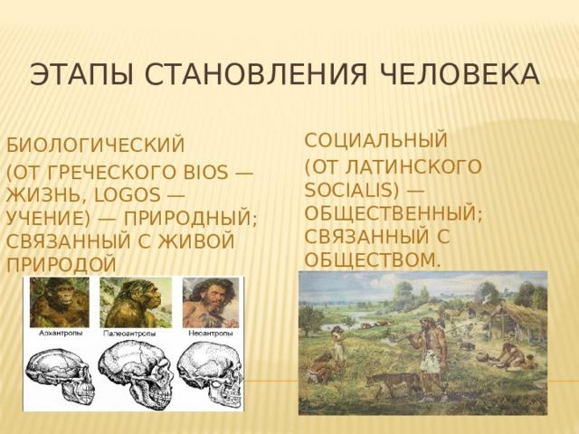 Этапы становления человека Социальный (от латинского socialis) — общественный; связанный с обществом. Биологический (от греческого bios — жизнь, logos — учение) — природный; связанный с живой природой