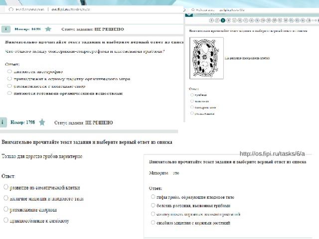 http://os.fipi.ru/tasks/6/a