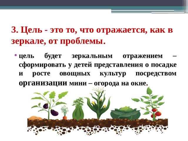 3. Цель - это то, что отражается, как в зеркале, от проблемы. цель будет зеркальным отражением – сформировать у детей представления о посадке и росте овощных культур посредством организации мини – огорода на окне.