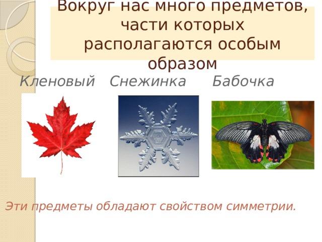 Вокруг нас много предметов, части которых располагаются особым образом Снежинка Бабочка Кленовый лист Эти предметы обладают свойством симметрии.