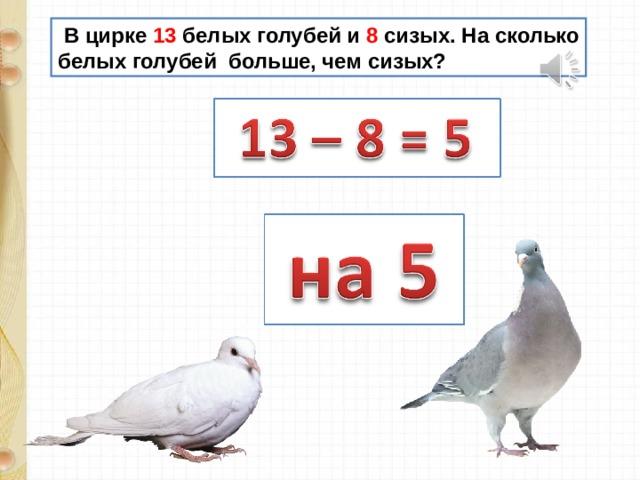 В цирке 13 белых голубей и 8 сизых. На сколько белых голубей больше, чем сизых?
