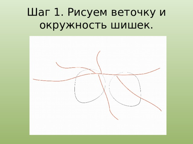 Шаг 1. Рисуем веточку и окружность шишек.