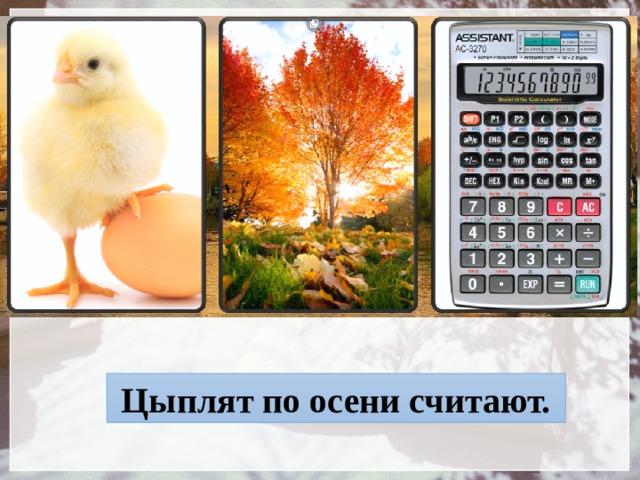 Цыплят по осени считают.