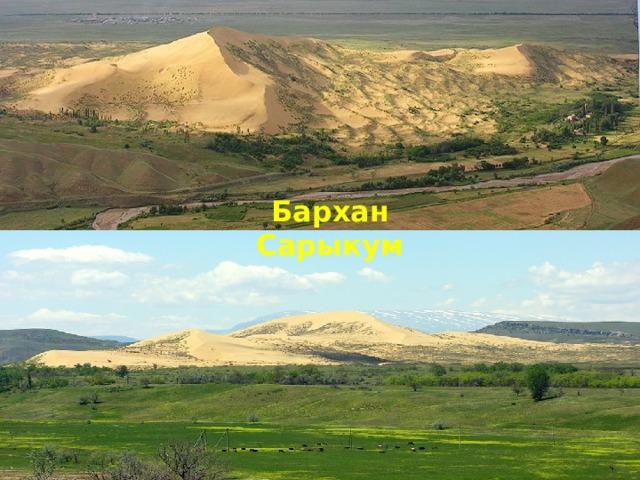 Бархан Сарыкум