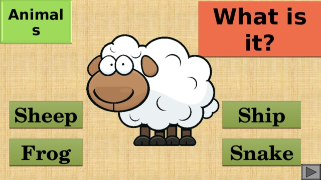 Animals What is it? Sheep Ship Frog Snake