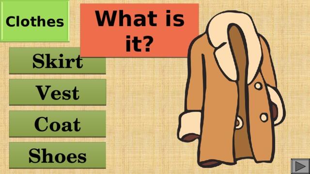 Clothes What is it? Skirt Vest Coat Shoes