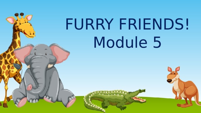 FURRY FRIENDS !  Module 5
