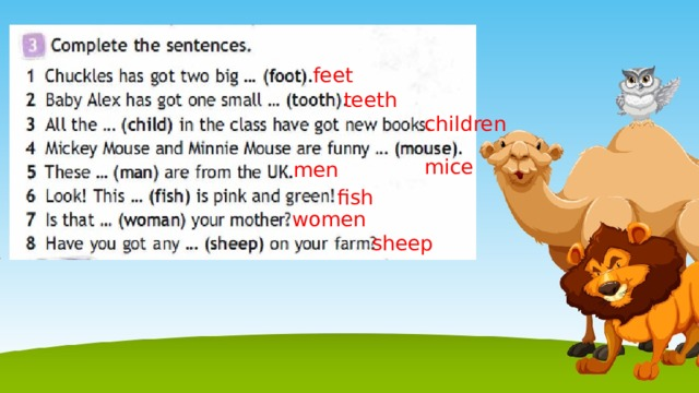 feet teeth children mice men fish women sheep