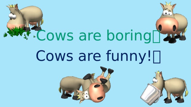 Cows are boring  Cows are funny! 