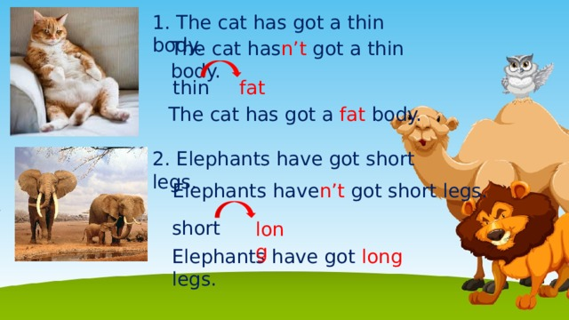 1. The cat has got a thin body. The cat has n't got a thin body. fat thin The cat has got a fat body. 2. Elephants have got short legs. Elephants have n't got short legs. short long Elephants have got long legs.