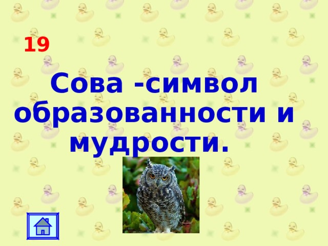 19 Сова -символ образованности и мудрости.