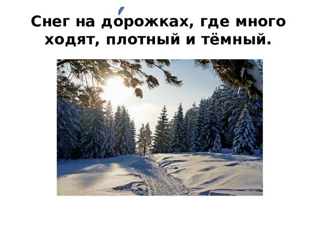 Снег на дорожках, где много ходят, плотный и тёмный.