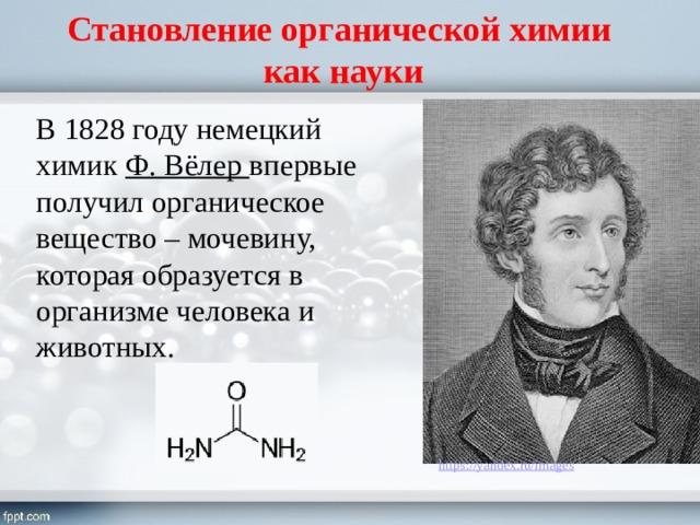 Становление органической химии  как науки В 1828 году немецкий химик Ф. Вёлер впервые получил органическое вещество – мочевину, которая образуется в организме человека и животных.