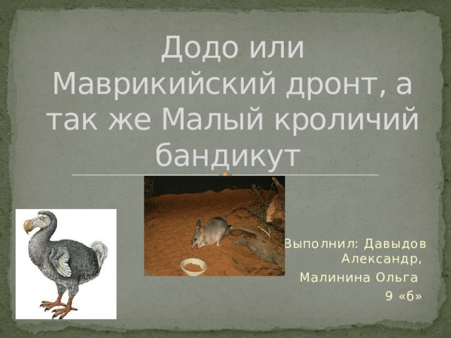 Додо или Маврикийский дронт, а так же Малый кроличий бандикут Выполнил: Давыдов Александр, Малинина Ольга 9 «б»
