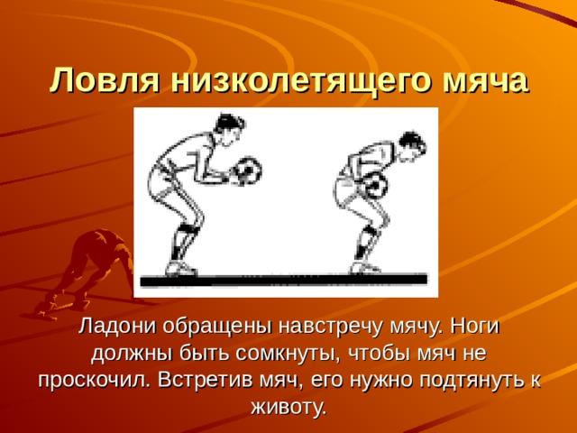 Ловля низколетящего мяча       Ладони обращены навстречу мячу. Ноги должны быть сомкнуты, чтобы мяч не проскочил. Встретив мяч, его нужно подтянуть к животу.