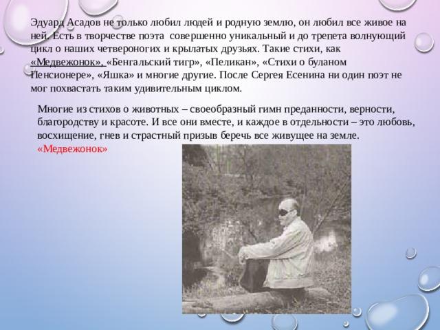 Эдуард Асадов не только любил людей и родную землю, он любил все живое на ней. Есть в творчестве поэта совершенно уникальный и до трепета волнующий цикл о наших четвероногих и крылатых друзьях. Такие стихи, как «Медвежонок», «Бенгальский тигр», «Пеликан», «Стихи о буланом Пенсионере», «Яшка» и многие другие. После Сергея Есенина ни один поэт не мог похвастать таким удивительным циклом.  Многие из стихов о животных – своеобразный гимнпреданности, верности, благородству и красоте.И все они вместе, и каждое в отдельности – этолюбовь, восхищение, гневи страстныйпризывберечь все живущее на земле. «Медвежонок»