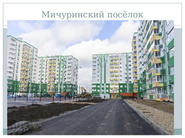 Мичуринский посёлок