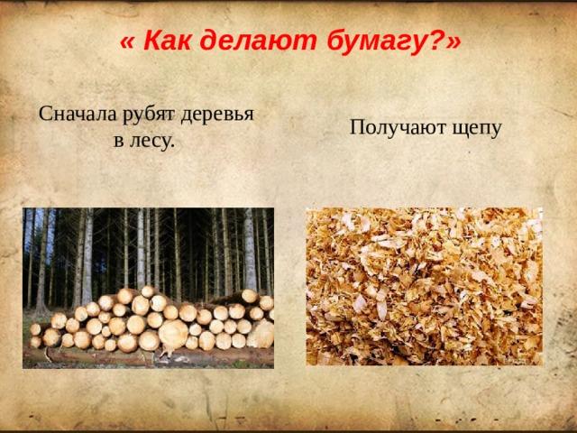 « Как делают бумагу?» Сначала рубят деревья в лесу.  Получают щепу