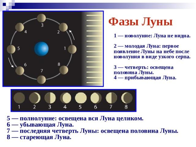 Фазы Луны  1 — новолуние: Луна не видна.  2 — молодая Луна: первое появление Луны на небе после новолуния в виде узкого серпа.  3 — четверть: освещена половина Луны.  4 — прибывающая Луна.   5 — полнолуние: освещена вся Луна целиком.  6 — убывающая Луна.  7 — последняя четверть Луны: освещена половина Луны.  8 — стареющая Луна.