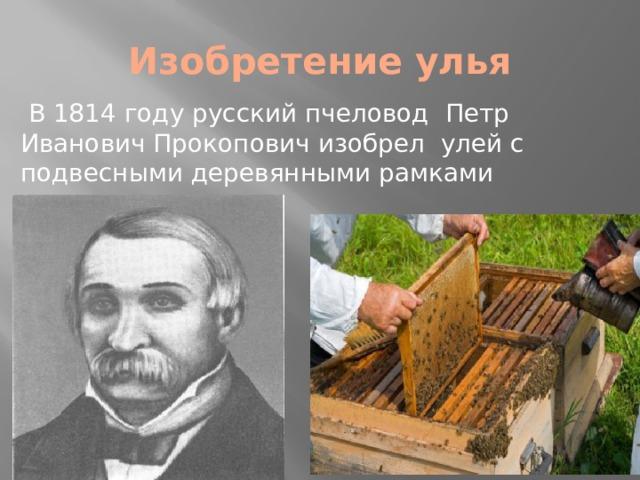 Изобретение улья  В 1814 году русский пчеловод Петр Иванович Прокопович изобрел улей с подвесными деревянными рамками