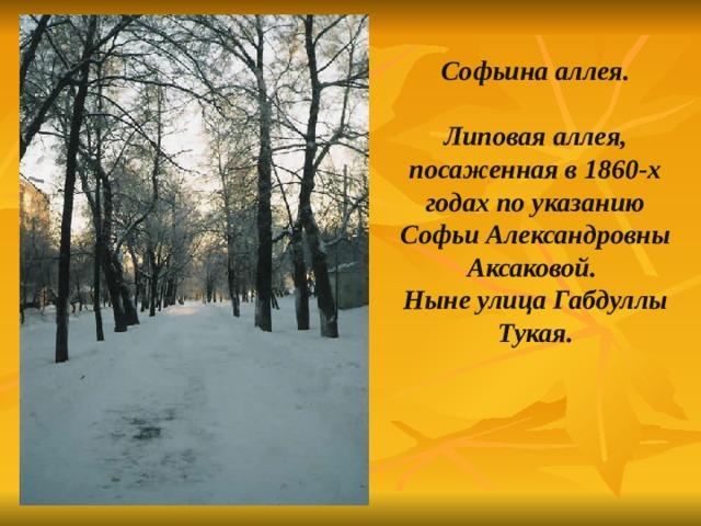 Софьина аллея.  Липовая аллея, посаженная в 1860-х годах по указанию Софьи Александровны Аксаковой. Ныне улица Габдуллы Тукая.