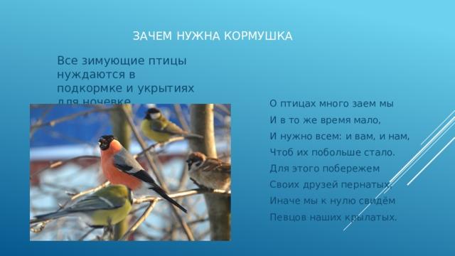 Зачем нужна кормушка Все зимующие птицы нуждаются в подкормке и укрытиях для ночевке . О птицах много заем мы И в то же время мало, И нужно всем: и вам, и нам, Чтоб их побольше стало. Для этого побережем Своих друзей пернатых, Иначе мы к нулю свидём Певцов наших крылатых.