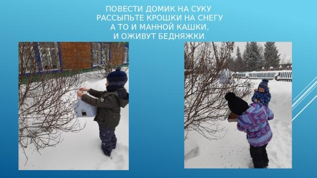 Повести домик на суку  Рассыпьте крошки на снегу  А то и манной кашки,  И оживут бедняжки .