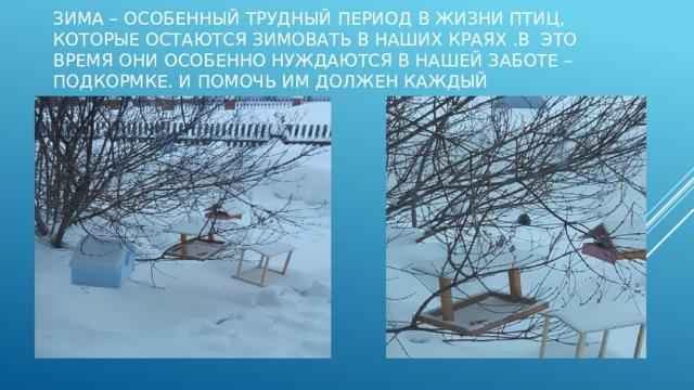 Зима – особенный трудный период в жизни птиц, которые остаются зимовать в наших краях .В это время они особенно нуждаются в нашей заботе – подкормке. И помочь им должен каждый