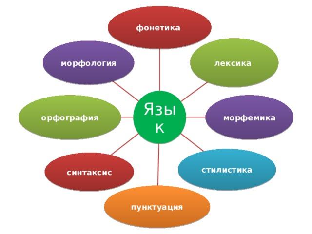 фонетика лексика морфология Язык морфемика орфография стилистика синтаксис пунктуация