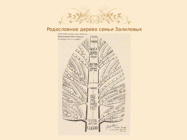 Родословное  дерево  семьи  Залиловых