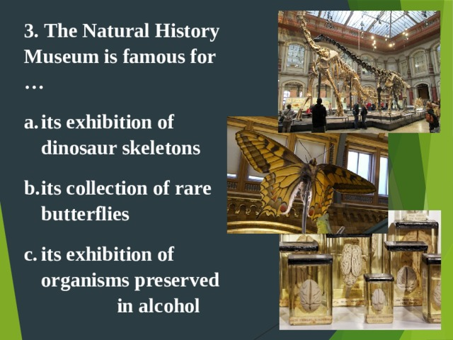 3. The Natural History Museum is famous for … its exhibition of dinosaur skeletons its collection of rare butterflies its exhibition of organisms preserved in alcohol