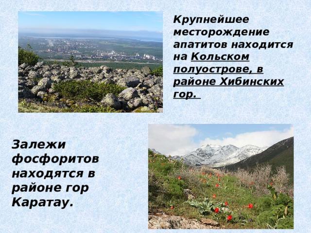 Крупнейшее месторождение апатитов находится на Кольском  полуострове, в районе Хибинских гор. Залежи фосфоритов находятся в районе гор Каратау.