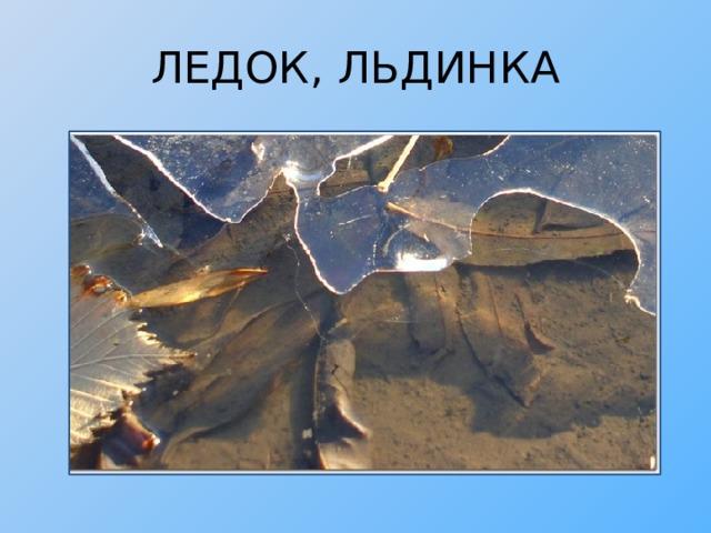 ЛЕДОК, ЛЬДИНКА