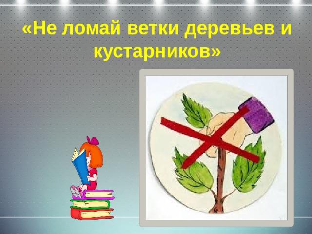 «Не ломай ветки деревьев и кустарников»