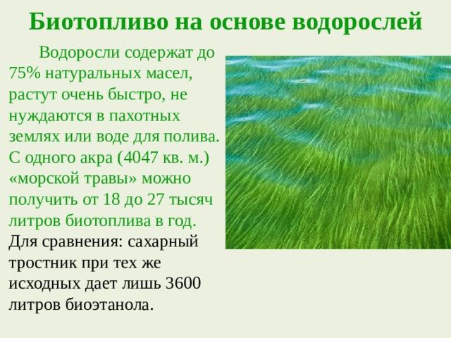 Биотопливо на основе водорослей  Водоросли содержат до 75% натуральных масел, растут очень быстро, не нуждаются в пахотных землях или воде для полива. С одного акра (4047 кв. м.) «морской травы» можно получить от 18 до 27 тысяч литров биотоплива в год. Для сравнения: сахарный тростник при тех же исходных дает лишь 3600 литров биоэтанола.
