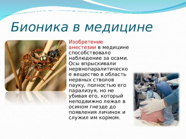 Бионика в медицине  Изобретение анестезии в медицине способствовало наблюдение за осами. Осы впрыскивали нервнопаралитическое вещество в область нервных стволов пауку, полностью его парализуя, но не убивая его, который неподвижно лежал в осином гнезде до появления личинок и служил им кормом.