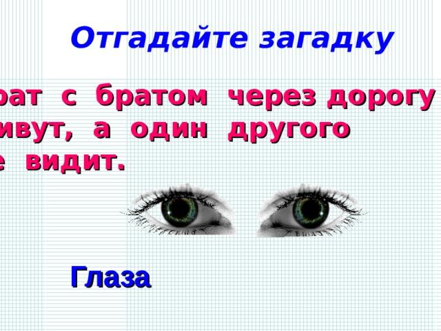 Отгадайте загадку Брат с братом через дорогу живут, а один другого не видит. Глаза