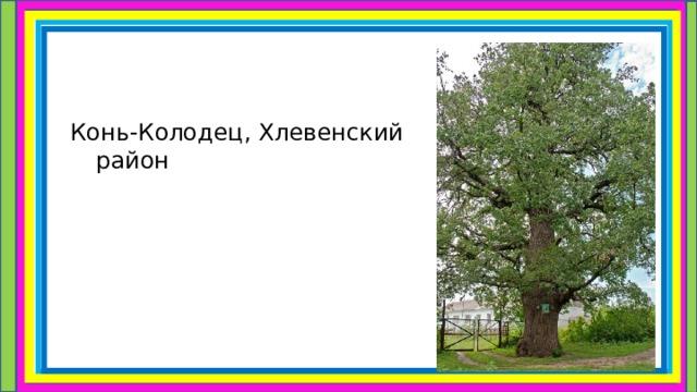 Конь-Колодец, Хлевенский район