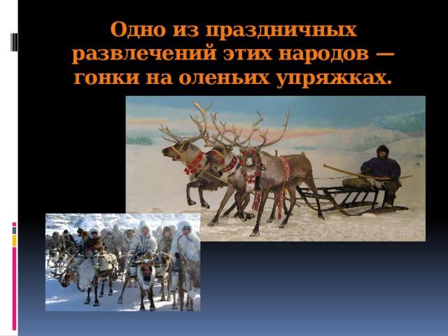 Одно из праздничных развлечений этих народов — гонки на оленьих упряжках.