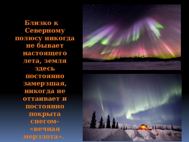 Близко к Северному полюсу никогда не бывает настоящего лета, земля здесь постоянно замерзшая, никогда не оттаивает и постоянно покрыта снегом- «вечная мерзлота».