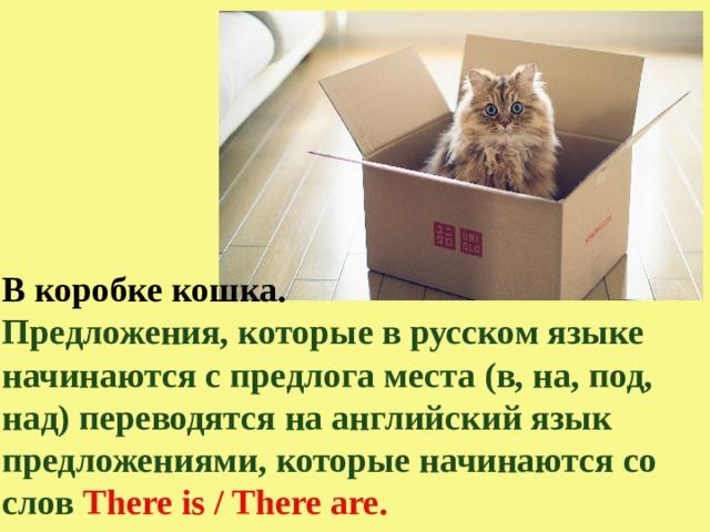 В коробке кошка. Предложения, которые в русском языке начинаются с предлога места (в, на, под, над) переводятся на английский язык предложениями, которые начинаются со слов There is / There are.
