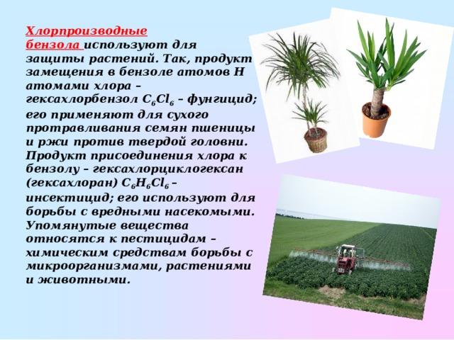 Хлорпроизводные бензола используют для защиты растений. Так, продукт замещения в бензоле атомов Н атомами хлора– гексахлорбензол С 6 Сl 6 – фунгицид; его применяют для сухого протравливания семян пшеницы и ржи против твердой головни. Продукт присоединения хлора к бензолу– гексахлорциклогексан (гексахлоран) С 6 Н 6 Сl 6 – инсектицид; его используют для борьбы с вредными насекомыми. Упомянутые вещества относятся к пестицидам– химическим средствам борьбы с микроорганизмами, растениями и животными.