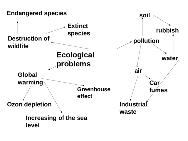 Endangered species soil Extinct species rubbish Destruction of wildlife pollution Ecological problems water air Global warming Car fumes Greenhouse effect Industrial waste Ozon depletion Increasing of the sea level